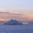 Iceberg Alley by Gina Ruttle  (Whalegeek)