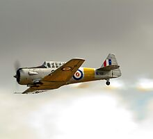 North American  Harvard  or T-6  Texan by aircraft-photos
