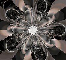Shine On by Julie Shortridge