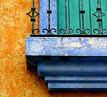 Complementary Colors by Gina Ruttle  (Whalegeek)
