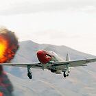 Yak-9 by aircraft-photos