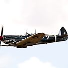 Supermarine  Spitfire by aircraft-photos