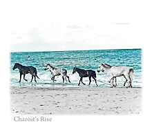 chariot's rise Photographic Print
