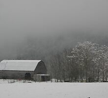 foggy wintery morning by Christopher  Ewing