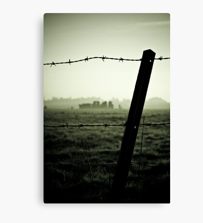 Barbed History Canvas Print