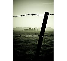 Barbed History Photographic Print