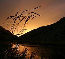 Sunset by Rick Champlin