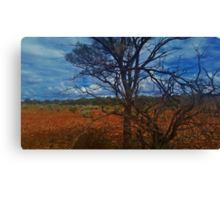 Dry Outback Canvas Print