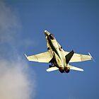 Boeing  FA-18  SUPER  HORNET   by aircraft-photos