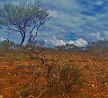 Dry Outback 2 by AlwaysCapture