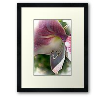 From Deep Within Framed Print