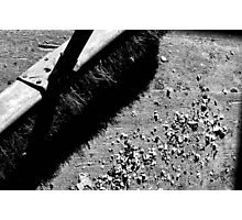 Of Broom and Shadow Photographic Print