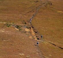 Trekking in the Drakensburg by Paige