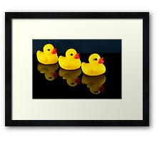 All your ducks in a row Framed Print