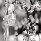 Chandelier by the-novice