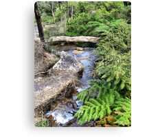 Creek at Araluen Canvas Print
