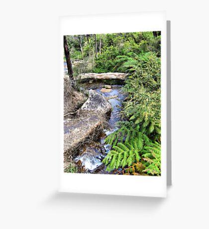 Creek at Araluen Greeting Card