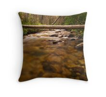 Iron Creek Throw Pillow