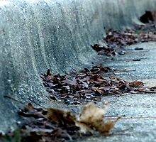 Dried Leafs in a Granite Gutter by nastruck