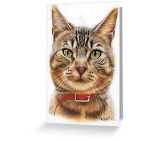 Jasper Greeting Card