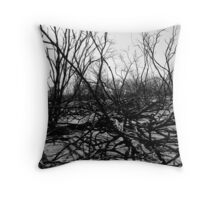 Aftermath Throw Pillow