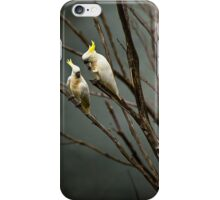 Cockatoos on a foggy morning iPhone Case/Skin