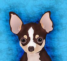 Chihuahua by NirPerel