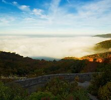 Sea of Mist Over Eardley Escarpment by Yannik Hay