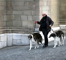 walking the dogs by Cornelia Togea