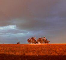 RAINBOW PANAORAMA by reuphiri