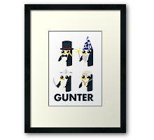 gunter evolution Framed Print