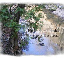 Still Waters by Butterfly2008