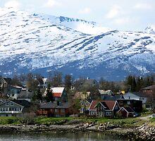Snowy Hills Behind Tromso by Jenny Brice