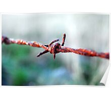 Barbed wire. Poster