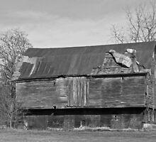 The Big Barn by ej29