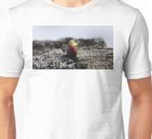The sign of spring Unisex T-Shirt