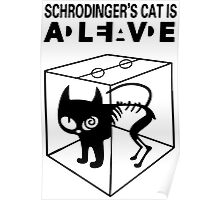 Schrodinger's Cat Science Big Bang Theory Poster
