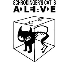 Schrodinger's Cat Science Big Bang Theory Photographic Print