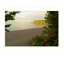 Racoon Beach at sunset, Campobello Island Art Print