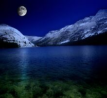 Moonlight Serenity by David Lampkins