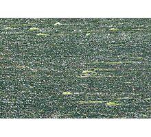 Stream of green Photographic Print