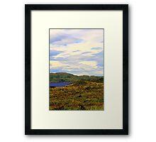 Summer  Colours Framed Print