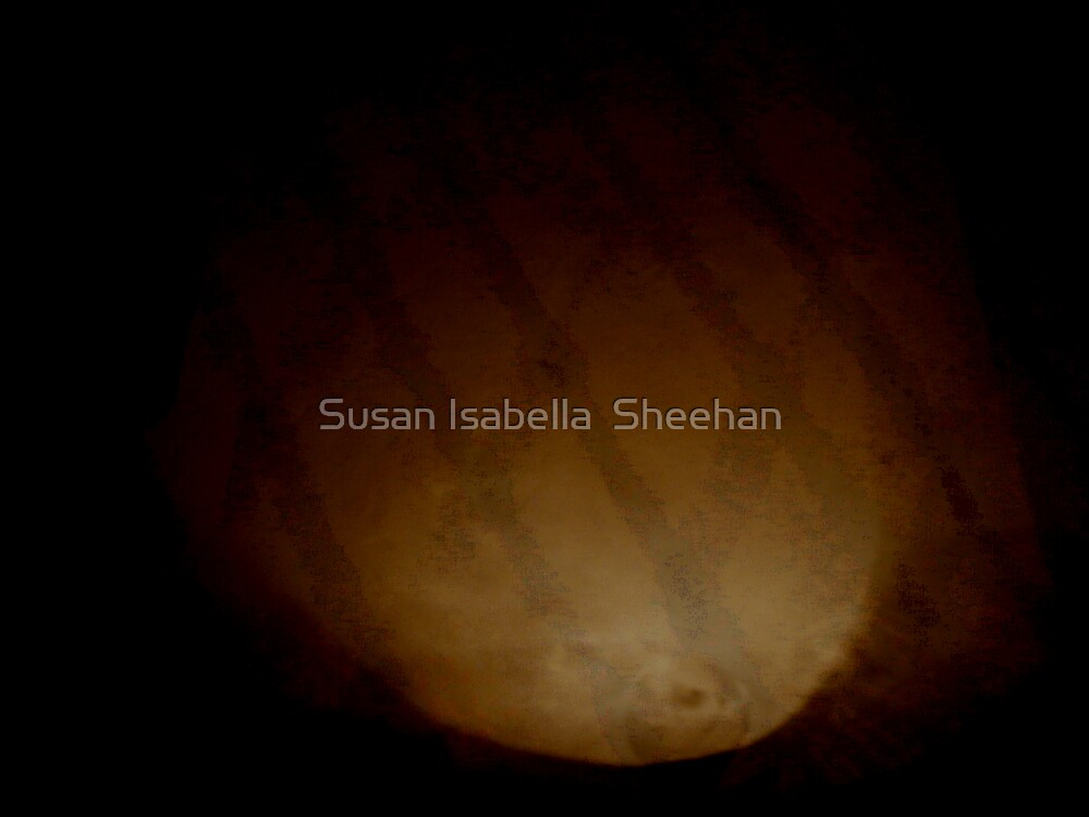 Pleasure Of Passion by Susan Isabella  Sheehan