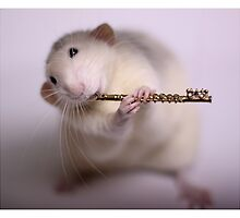 Playing the flute by Ellen van Deelen