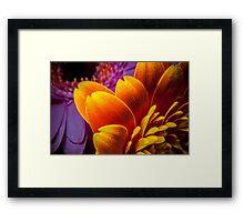 MacroFlower One Framed Print