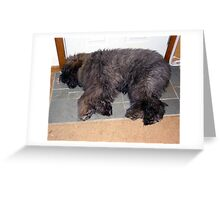 Tired Out Greeting Card
