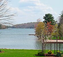 Spring Time View on the Lake by vigor