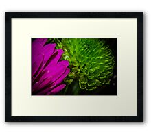 MacroFlower Six Framed Print