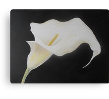 Cala Lillie Canvas Print