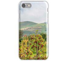 Apple harvest below Bad Berg, Kaiserstuhl, Germany iPhone Case/Skin